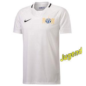 fc-zuerich-home-shirt-j