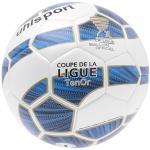 fussball-ligue1-tenor