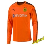 dortmund-goali-shirt-j