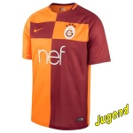 galatasaray-home-shirt-j
