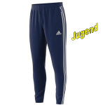 adidas-training-pants