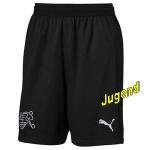 schweiz-goalkeeper-shortsj