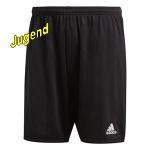 adidas-shortsj