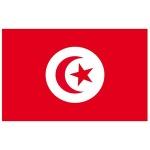tunesien-fahne