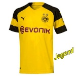 dortmund-home-shirt-j