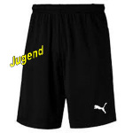 puma-liga-trainings-shorts-