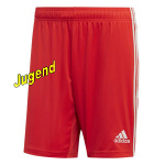 juve-turin-away-shorts-j
