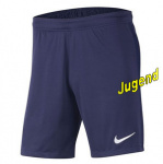frankreich-away-shorts-j