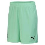 Schweiz-tw-shorts