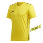 fcmuhen-trainings-shirt-j