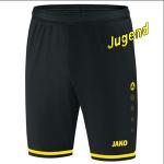 jako-strike-shorts-j